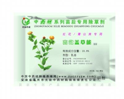 红花(蒲公英)苗后专用除草剂